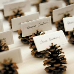 New wedding winter pine cones place cards 20 Ideas Christmas Wedding, Fall Wedding, Christmas Time, Rustic Wedding, Xmas, Trendy Wedding, Christmas Place Cards, Cottage Wedding, Simple Christmas