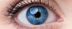 Japanese scientists have reported the first successful skin-to-eye stem cell transplant in humans, where stem cells derived from a patient's skin were transplanted into her eye to partially restore lost vision. The patient, a 70-year-old woman...