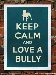 Keep calm and love a bully
