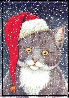 Kaikki joulukortit joissa esiintyy kissa