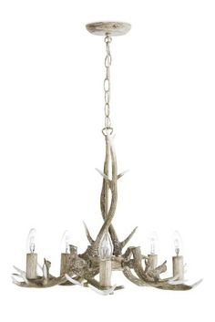Antler light next didnt think id want this kind of thing but master bedroom buy antler 5 light grey washed pendant from the next uk online shop gorgeous chandeliers aloadofball Image collections