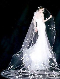 wedding dress and super long veil