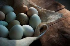Fake eggs for kitchen basket