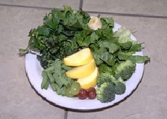 Awesome site regarding a healthy diet for Bearded Dragons