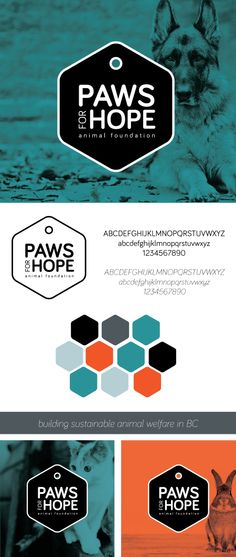 Paws for Hope Re-Brand. Bulding sustainable animal welfare in Vancouver, BC. Original Design and Concepts by Alicia Carvalho | www.alicia-carvalho.com