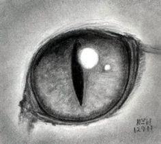 Drawing a cat eye