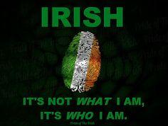 Irish photo 484688_504098389659595_207899071_n.jpg