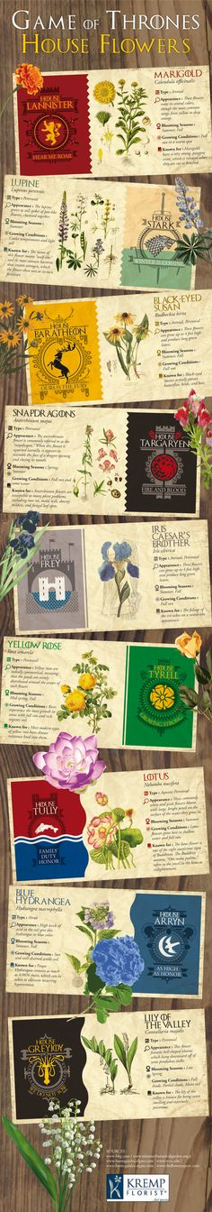 Infographic Game of Thrones House Flowers - Love anything #GoT