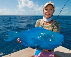 """Male blue parrotfish, Scarus coeruleus, like this one modeled by Katie Bajrak and caught by fellow Islamorada, Florida resident, Andy Newman, can reach a length of more than three feet. Although """"herbivorous"""" fishes, blue parrotfish will also consume animal material and are commonly caught on shrimp."""