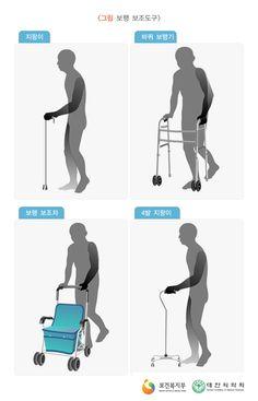 보행보조도구 그림, 지팡이, 바퀴 보행기, 보행 보조차, 4발 지팡이. 보건복지부/대한의학회 제공