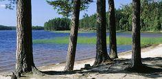 Summer at Haukkajärvi Lake. Baltic Sea, Archipelago, Vintage Postcards, Scandinavian, Tourism, National Parks, Europe, Exterior, Country