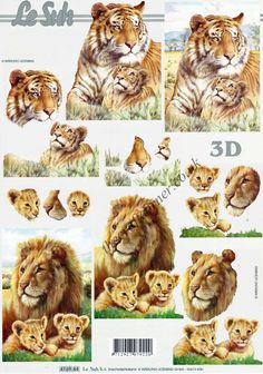 lion-tiger-wild-animals-3d-decoupage-craft-sheet-740-p.jpg (Obrazek JPEG, 984×1402 pikseli)