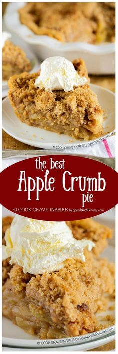 The BEST Apple Crumb Pie! This is truly the best apple pie recipe you'll ever make! Loaded with fresh tart apples and topped with a sweet brown sugar crumble, this is one recipe that will be requested over and over!: