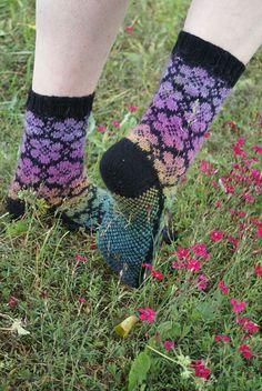 Ravelry: Flower Power by Susanne Chotty – Knitting Socks Knitting Socks, Knitted Hats, Knit Socks, Flower Power, Knitting Patterns, Crochet Patterns, Knitting Accessories, Dobby, Fingerless Gloves