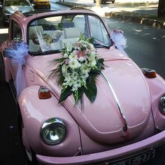 klasik arabalar için, pudra pembe üzerine beyaz ve uyumlu çiçekler ve tüller ile yapılan exsotic çalışma