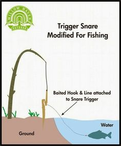 New Skills for Survival for catching fish! - Tap The Link Now To Find Gadgets for Survival and Outdoor Camping Game Of Survival, Camping Survival, Outdoor Survival, Survival Prepping, Survival Gear, Survival Skills, Urban Survival, Emergency Preparedness, Camping Hacks