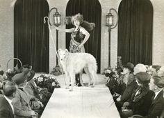 ❤ =^..^= ❤   R. C. Heagy, Fashion Show with Borzoi, Silver Gelatin Print, 1920s.