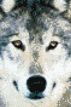 Wilko Wyje detal ♥