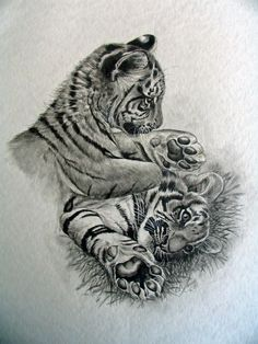 Pics Photos - Baby Tiger Cub Tattoo Free