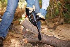 Tree Trimmer Saw Tool Electric Pole-saw Chainsaw Telescoping Pole 10 Foot Prune Best Electric Chainsaw, Chainsaw Reviews, Saw Tool, Schneider, Outdoor Power Equipment, Garden Tools, Shopping, Ebay, Tree Trimmer