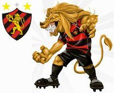 Blog do Bellotti - Opinião sobre futebol: Campeonatos Regionais... rivalidade e títulos