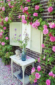für die Seite im Garten