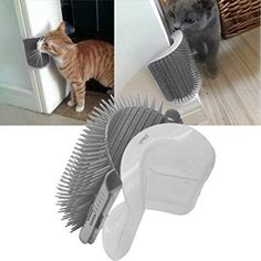 InnoPet Upgraded Version Cat Self Groomer with Catnip,Dog Cat Brush,Wall Corner Massage Comb,Grooming Brush. I Love Cats, Crazy Cats, Cute Cats, Gato Gif, Cat Shelves, Cat Playground, Cat Enclosure, Cat Room, Cat Wall