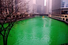 St. Pat's Day in Chicago!