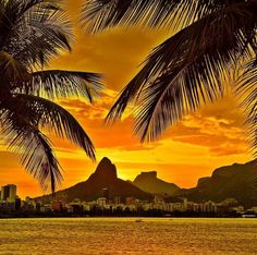 Sunset in Rio de Janeiro - Brazil ✨💛💛🌴🌴✨ Picture by ✨✨ Napoleon Hill, Transformers, Travel Abroad, Palm Trees, The Good Place, Around The Worlds, Beautiful, Pictures, Outdoor