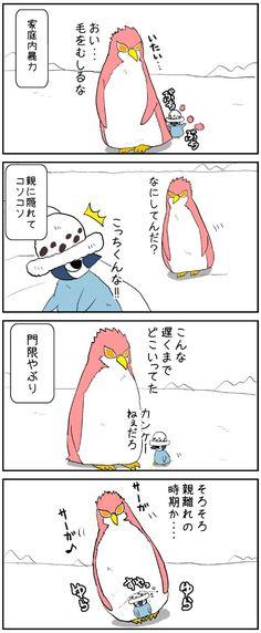 Doflamingo&Law①