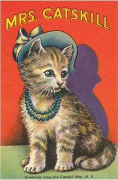 Old greeting postcard
