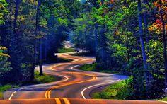 Paisajes árboles fondo de pantalla 1920x1080 carreteras