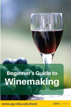 A beginner's guide to winemaking. Learn how to make wine at home from locally gr… A beginner's guide to winemaking. Learn how to make wine at home from locally grown fruit. Homemade Wine Making, Homemade Wine Recipes, Homemade Alcohol, Homemade Liquor, Drink Recipes, Making Wine From Grapes, Making Wine At Home, Wine And Liquor, Wine And Beer