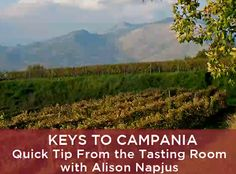 Campania is quietly making delicious and distinctive wines. In this video, learn about the key grapes, wine styles and favorite pairings with Alison Napjus, Wine Spectator's lead taster on the wines of this region in Southern Italy.