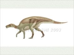 Welcome to Keiji Terakoshi's Illustrations Gallery DOFU-AN. To see an enlarged image, please point or press on the illustration. If you are lucky, you will find special displays, too! Dinosaur Discovery, Prehistoric Creatures, Crocodiles, Beagle, Reptiles, Fossil, Moose Art, Paleo, Gallery