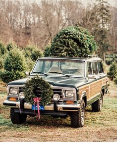 Love the wagon in this pic. Christimas tree is just a bonus!