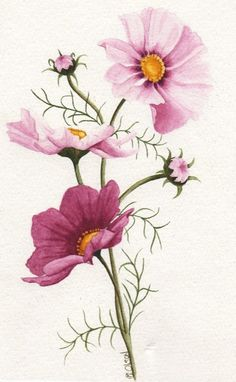 Trendy Tattoo Ideas For Moms Names Birth Flowers - Tattoo Art Watercolor Cards, Watercolor Flowers, Watercolor Paintings, Flower Paintings, Watercolour, Botanical Flowers, Botanical Prints, Month Flowers, Cosmos Flowers
