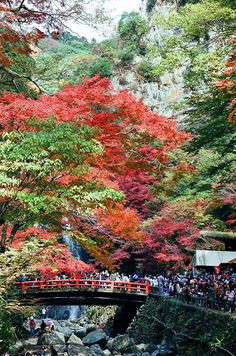 Minoh Waterfall. Osaka, Japan