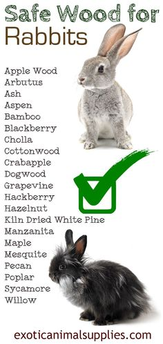 Safe wood for rabbits perfect for making rabbit toys cages and accessories. This rabbit safe wood is great for your bunny to chew on and wear down their teeth.