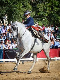 Carlos Jiménez #domavaquera @edupenafoto #sevilla #huelva #mairenadelalcor #visodelalcor #elrocio #fei #caballos #lospalaciosyvillafranca #carmona #jerez #villanuevadelrioyminas #cantillana #umbrete #alcaladeguadaira #horses #sambartolomedelatorre #puebladeguzman #andalucia #villanuevadelrioyminas #jerez #cordoba #jerez #elrocio #manzanilla #villalbadelalcor #hinojos #lapalmadelcondado @edupenafoto