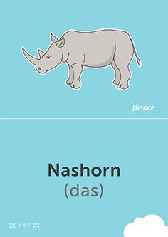 Nashorn #CardFly #flience #animals #german #education #flashcard #language