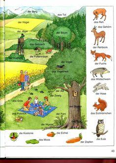 En forêt et dans les champs 2/2