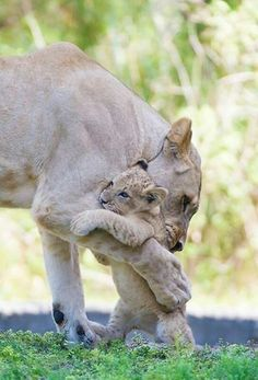 """A tender moment """"You are just the cutest bestest little gal"""""""