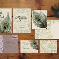 Classic Peacock Feather Theme - Illustrated Wedding Invitations and Stationery by www.aliciasinfinity.com