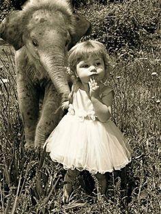 I love elephants. Baby elephants.