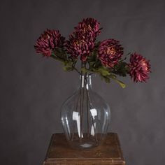 5.95gbp each Autumn Spider Chrysanthemum — The Recipe Scilly Island, Lavender Bush, Chrysanthemum Flower, Ombre Effect, White Ranunculus, Hill Interiors, Fake Plants, Faux Flowers, Artificial Flowers