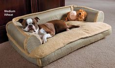 "Sleeper Dog Bed Large, 43"" x 28"" x 11.5"" h Color: Bark Sherpa cute!!! this is being REALLY SPOILED!!! COUCH POTATO!!!!"