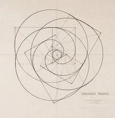 Fibonacci Trefoil