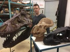 Male or female? Scientist challenges evidence of sex differences among dinosaurs