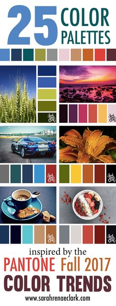 25 Color Palettes Inspired by the Pantone Fall 2017 Color Trends Colour Pallette, Colour Schemes, Color Trends, Color Combos, Paint Schemes, Pantone Fall 2017, Pantone Color, Fall 2017 Colors, Palette Design
